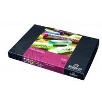 Rembrandt Soft Pastels BASIC SET OF 30 PORTRAIT